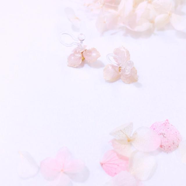 本物のお花アクセ゚+小さな紫陽花ノンホール ハンドメイドのアクセサリー(イヤリング)の商品写真