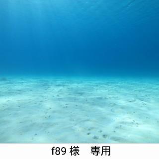 アクアラング(Aqua Lung)のダイビング 重機材 アクアラング(マリン/スイミング)