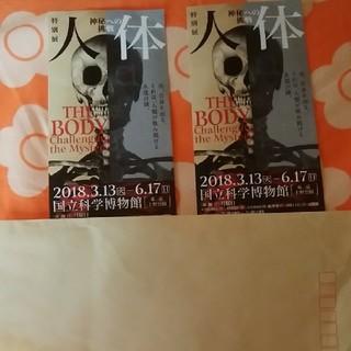 人体展チケット(美術館/博物館)