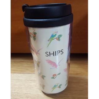 シップス(SHIPS)の《非売品》SHIPSの新品タンブラー(タンブラー)