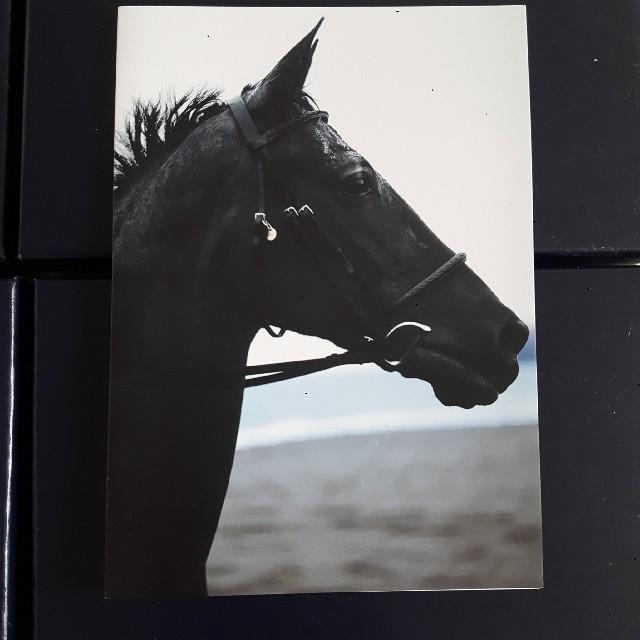 Ralph Lauren(ラルフローレン)のRALPH LAUREN グリーティングカード ハンドメイドの文具/ステーショナリー(カード/レター/ラッピング)の商品写真
