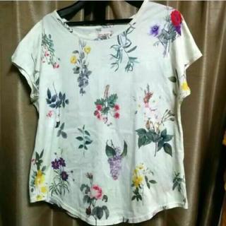 シンディー(SINDEE)のSINDEE(シンディー)花柄 Tシャツ(Tシャツ(半袖/袖なし))