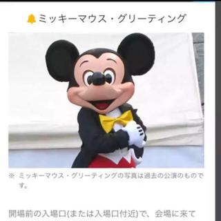 ディズニー(Disney)のディズニーオンアイス ミッキーマウスグリーティング特典付き‼️(ミュージカル)