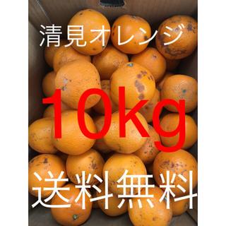 和歌山県 傷あり訳あり清見オレンジ 10kg(フルーツ)