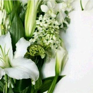 シロ(shiro)のごはん様〘 新品〙shiro  ホワイトリリー 練り香水♡ショッパー付き♡(その他)