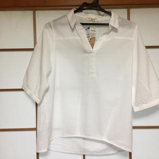 キャラジャ(CALAJA)のスキッパーシャツ M(シャツ/ブラウス(長袖/七分))