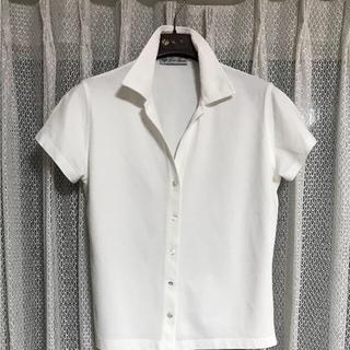 ロロピアーナ(LORO PIANA)のhikochan様 専用  ロロピアーナ   ポロシャツ2枚(ポロシャツ)