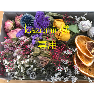 kazumin様専用 ドライフラワーの詰め合わせセット②(ドライフラワー)