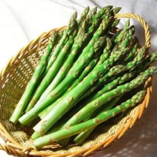 数量限定‼️送料無料‼️アスパラ苗2株(野菜)