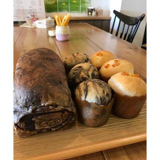 ♬焼きたて食パン♬チョコレート食パン&カップパン