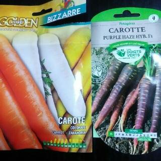 カラフルなニンジンの種 4色混合300粒 イタリア野菜の種(野菜)