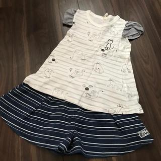 マルーク(maarook)のnino ニノ 猫Tシャツとボーダースカパン 100(Tシャツ/カットソー)