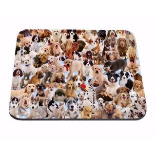 犬マウスパッド 沢山のワンちゃんマウスパッド♪ 新品未使用 送料無料(犬)