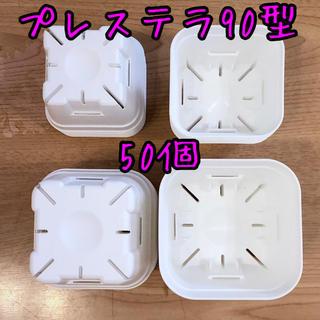 ♡プレステラ90型 人気のホワイト♡新♡50個♡(その他)