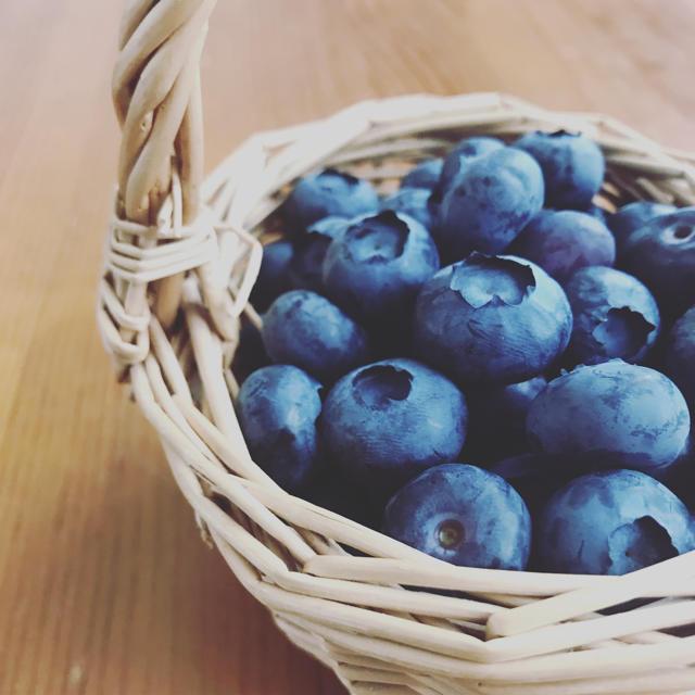 ブルーベリー 食品/飲料/酒の食品(フルーツ)の商品写真