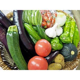 農家直売 野菜詰合せ 100サイズ 熊本産 送料込み(野菜)