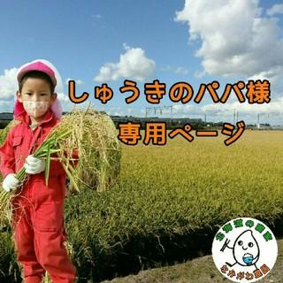しゅうきのパパ様専用(米/穀物)