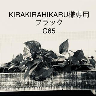 KIRAKIRAHIKARU様専用(ブラ)