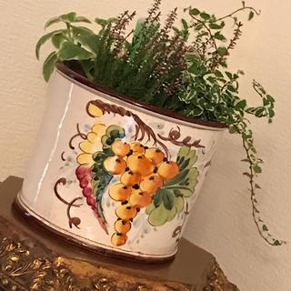 ザラホーム(ZARA HOME)のイタリア🇮🇹製  フラワーポット(花瓶)