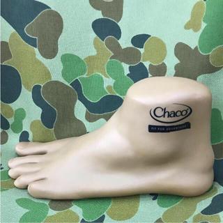 Chaco トルソー