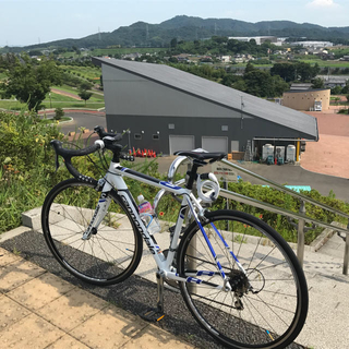 Cannondale - cannondale caad8 2015