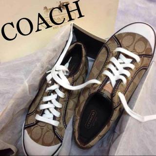コーチ(COACH)の⭐️新品⭐️【COACH コーチ】スニーカー☆シグネチャー☆ブラウン(スニーカー)