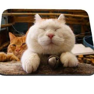 猫 猫マウスパッド 可愛いシロちゃんのマウスパッド♪ 新品未使用品 送料無料(猫)
