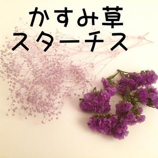 ハーバリウム 花材 パープル かすみ草 スターチス セット(ドライフラワー)