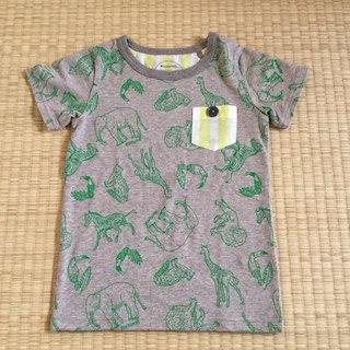 マルーク(maarook)のmaarook マルーク 新品 Tシャツ(Tシャツ/カットソー)