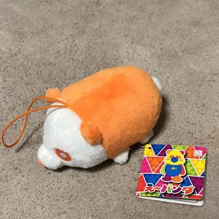 AAA - え〜パンダ