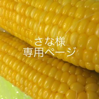 さな様専用(野菜)