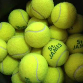 ダンロップ(DUNLOP)の送料込み!セントジェームステニスボール激安(ボール)