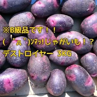 B級品 3kg ( ゚д゚)ンマッ!じゃがいも!? デストロイヤー(野菜)