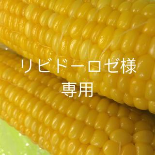 リビドーロゼ様専用(野菜)