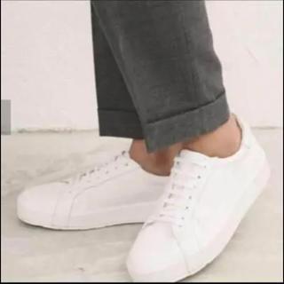 ジルサンダー(Jil Sander)の【新品】JIL SANDER Leather sneaker(スニーカー)