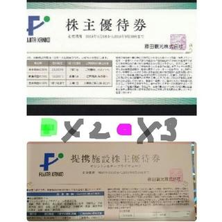 藤田観光   緑2枚  ピンク3枚 セット(その他)