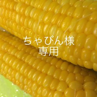 ちゃびん様専用(野菜)
