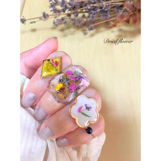 ドライフラワーリング ♡4点セット♡ 夏のリング花でコーデしませんか♪(リング)