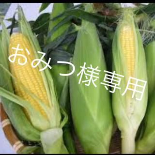 人気ありがとう夏野菜詰め合わせ(野菜)