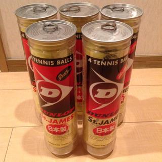 ダンロップ(DUNLOP)のダンロップ テニスボール Stジェームス 4個入✖️5缶(ボール)
