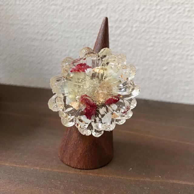 Botanical ring ハンドメイドのアクセサリー(リング)の商品写真
