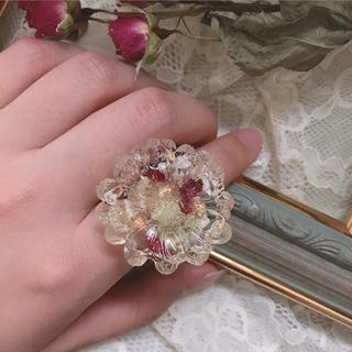 Botanical ring(リング)