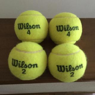 ウィルソン(wilson)のWilson テニスボール  4個(ボール)