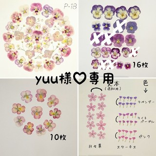 yuu様♡専用【P-18】ゆめかわ 押し花 セット ビオラ 紫陽花(ドライフラワー)