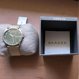 スカーゲン(SKAGEN)のスカーゲン SKW6383 腕時計(その他)