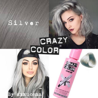 Crazy Color Hair dye ✩ Silver(カラーリング剤)