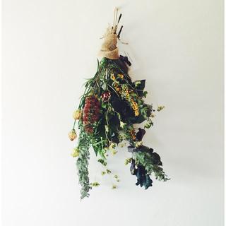 ひとん様専用 ブラシの木 ミモザのアンティックドレス&ノスタルジア2(ドライフラワー)