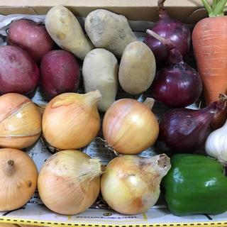 淡路島【コンパクト】ミニ野菜set(野菜)