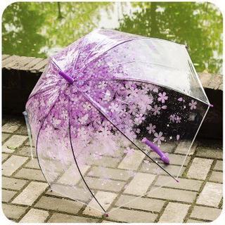 雨の日は、今人気のさくら紫柄の透明傘で晴れやかに(傘)