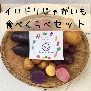 【限定】イロドリじゃがいも食べくらべセット 合計4キロ(野菜)
